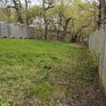 backyard with trees